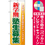 のぼり旗 新学期 塾生募集 (GNB-63) [プレゼント付]