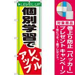 のぼり旗 個別学習でレベルアップ (GNB-66) [プレゼント付]