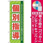 のぼり旗 個別指導 グリーン (GNB-67) [プレゼント付]