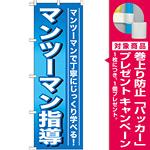 のぼり旗 マンツーマン指導 (GNB-759) [プレゼント付]