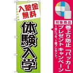 のぼり旗 体験入学 (GNB-779) [プレゼント付]