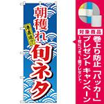 のぼり旗 朝穫れ旬ネタ (H-473) [プレゼント付]