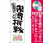 のぼり旗 限界への挑戦 ナマズ柄 (SNB-1238) [プレゼント付]