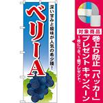 のぼり旗 ベリーA (SNB-1377) [プレゼント付]