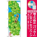 のぼり旗 マスカット (イラスト) (SNB-1445) [プレゼント付]