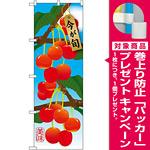 のぼり旗 さくらんぼ (イラスト) (SNB-1450) [プレゼント付]