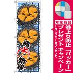 のぼり旗 うに (イラスト) (SNB-1567) [プレゼント付]