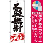のぼり旗 大盛無料 ランチ限定 (SNB-2003) [プレゼント付]