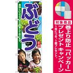 のぼり旗 ぶどう 子供写真 (SNB-2201) [プレゼント付]