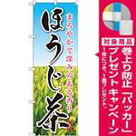 のぼり旗 ほうじ茶 (SNB-2211) [プレゼント付]