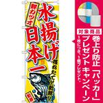 のぼり旗 鮮カツオ 水揚げ日本一 (SNB-2330) [プレゼント付]