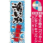 のぼり旗 活いか 新鮮美味 (SNB-2358) [プレゼント付]