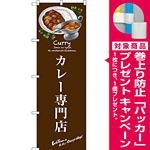 のぼり旗 カレー専門店 (SNB-3145) [プレゼント付]