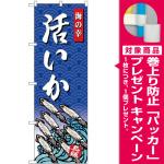 (新)のぼり旗 いか 海の幸 (SNB-4312) [プレゼント付]