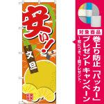 のぼり旗 安い 文旦 (SNB-4384) [プレゼント付]