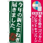 のぼり旗 今年の新たまねぎ届きました (SNB-4386) [プレゼント付]