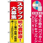 のぼり旗 (1286) スタッフ大募集初心者歓迎 [プレゼント付]