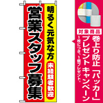 のぼり旗 (1294) 営業スタッフ募集 [プレゼント付]
