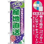 のぼり旗 (1365) 産地直送ぶどう [プレゼント付]