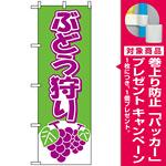のぼり旗 (2211) ぶどう狩り 緑/紫 [プレゼント付]