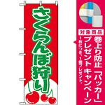 のぼり旗 (2230) さくらんぼ狩り [プレゼント付]
