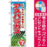 のぼり旗 (2836) アスパラガス [プレゼント付]