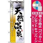 のぼり旗 (2842) 天然温泉 写真 [プレゼント付]