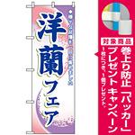 のぼり旗 (3249) 洋蘭フェア [プレゼント付]