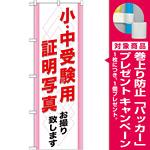 のぼり旗 (GNB-246) 小・中受験用 証明写真 [プレゼント付]