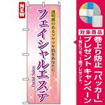 のぼり旗 (7494) フェイシャルエステ [プレゼント付]