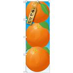 のぼり旗 オレンジ 絵旗 -1 (21412)