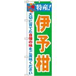 のぼり旗 特産!伊予柑 (21481)