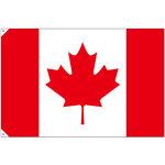販促用国旗 カナダ サイズ:大 (23729)