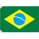 販促用国旗 ブラジル サイズ:小 (23737)