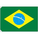 販促用国旗 ブラジル サイズ:大 (23738)