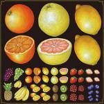 フルーツ(2) 看板・ボード用イラストシール 柑橘系(W285×H285mm)