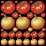 トマト タマネギ 看板・ボード用イラストシール (W285×H285mm)