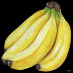 デコシール バナナ サイズ:ビッグ W600×H600 (61879)
