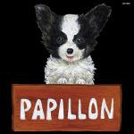 デコシール 犬 パピヨン サイズ:ミニ W100×H100 (62070)