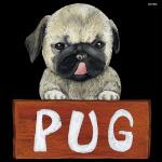 デコシール 犬 パグ サイズ:ミニ W100×H100 (62072)