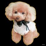 デコシール 犬 プードル (写真2) サイズ:ビッグ W600×H600 (61940)