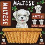 マルチーズ 看板・ボード用イラストシール