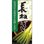 フルカラー店頭幕 長ねぎ (受注生産品) 素材:ポンジ (63314)
