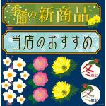 和菓子(4) 季節の新商品 看板・ボード用イラストシール (W285×H285mm)