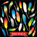 鳥の羽 看板・ボード用イラストシール