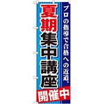 のぼり旗 夏期集中講座 開催中 (GNB-1593)