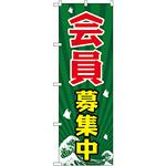 のぼり旗 会員募集中 (GNB-2205)