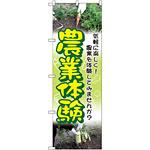 のぼり旗 農業体験 (GNB-2533)