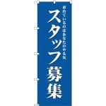 (新)のぼり旗 スタッフ募集(青) (GNB-2715)