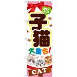 のぼり旗 子猫 (GNB-554)